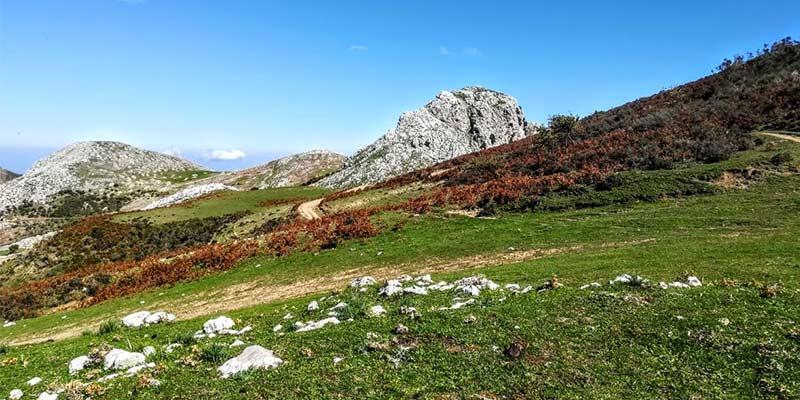 Nebrodi, terreni sottratti alla mafia: una proposta di legge