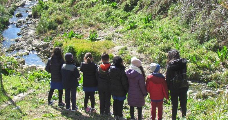 Alunni del Neglia-Savarese di Enna studiano l'acqua e vanno alla scoperta del torrente Torcicoda