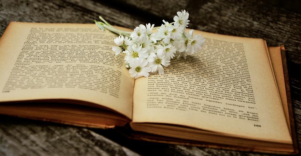 Ad Enna la X edizione della festa del libro e della lettura