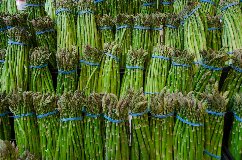La sagra dell'asparago dal 25 al 27 aprile a Mirabella