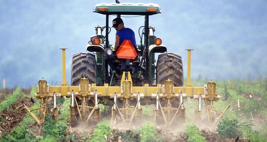 """Camera di Commercio di Enna -""""SICILIAMOEXPO"""" : avviso per le imprese dell'agroalimentare"""