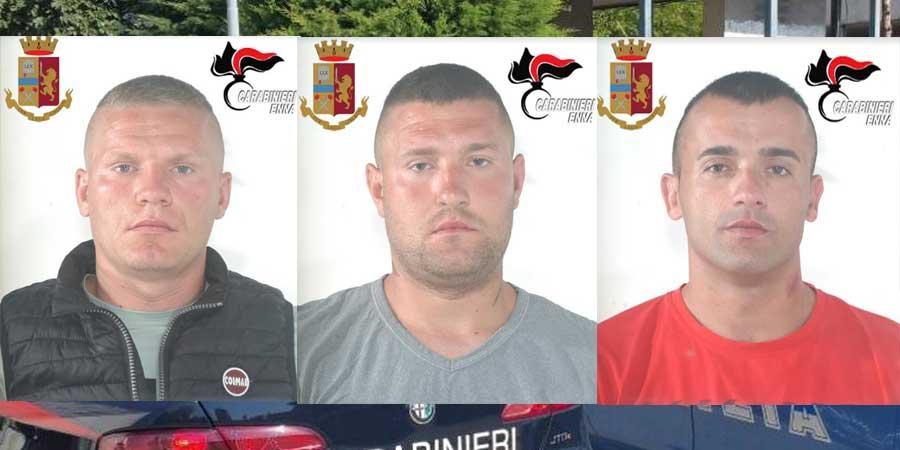 Enna – Operazione di polizia e carabinieri: sgominata una nutrita banda di ladri. Aziende e abitazioni nel loro mirino