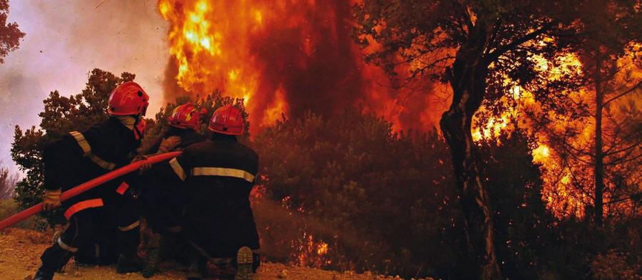 Campagna Antincendio 2020. Riunione operativa in Prefettura