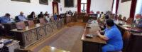 """Il consigliere comunale Debora Zanerolli smentisce false notizie sul suo stato di salute:""""sono in attesa dell'esito del tampone""""."""