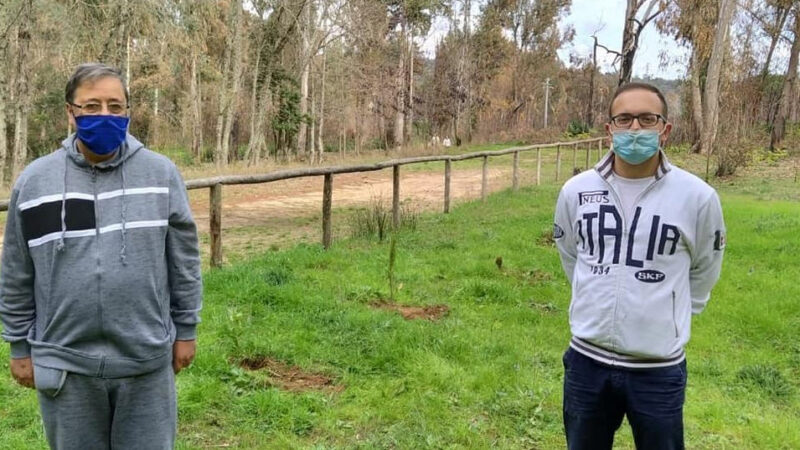 Rotaract Club Piazza Armerina: donati 11 alberi alla comunità piantumati nei pressi dell'ingresso al bosco Bellia