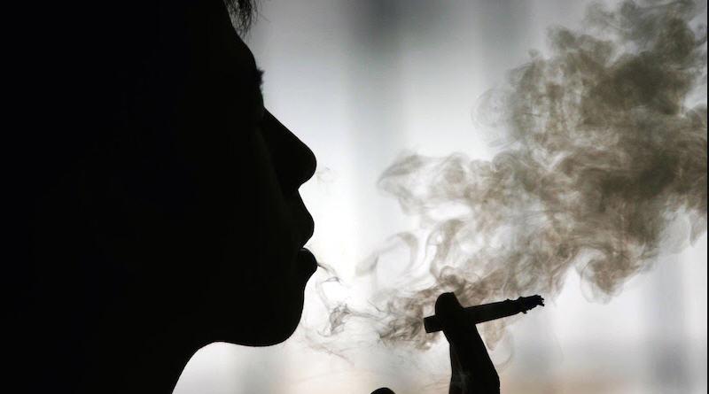 Arterosclerosi e fumo. La causa non sarebbe la cannabis ma il tabacco