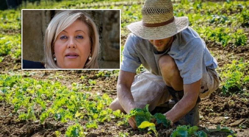 """Agricoltura- L'On Luisa Lantieri: """"canoni irrigui da sospendere immediatamente. Agricoltori in ginocchio"""""""
