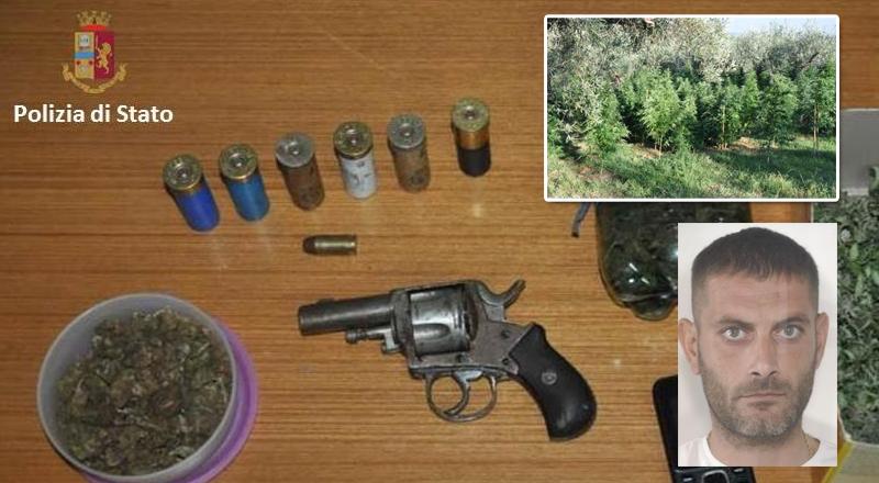 Centuripe: arrestato un uomo per coltivazione e produzione di  marijuana