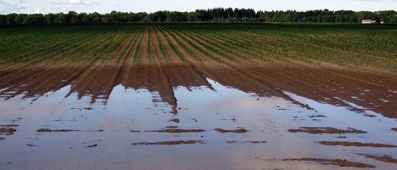 Agricoltura e danni causati dal maltempo – CIA: Valorizzare i consorzi di bonifica
