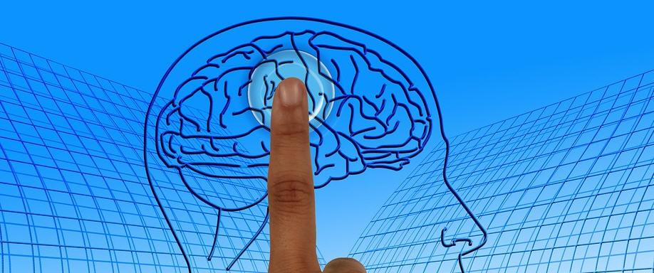 La Settimana del Cervello: la campagna mondiale per la diffusione delle neuroscienze anche in provincia di Enna.