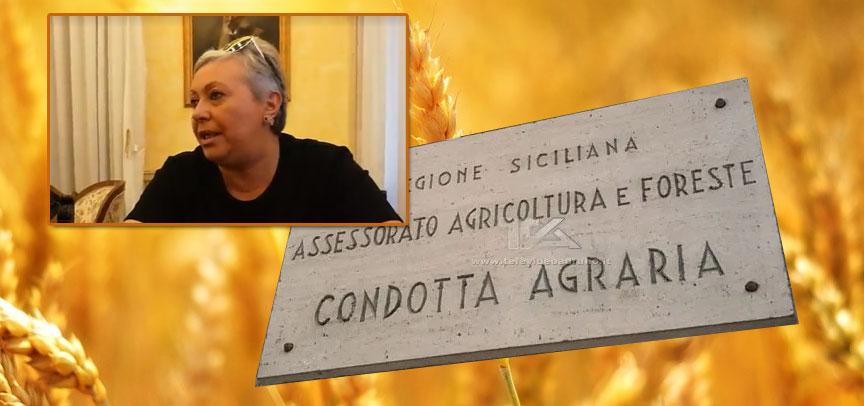 """Piazza Armerina –  L'On. Luisa Lantieri: """"la Condotta Agraria è sede centrale e perfettamente operativa"""""""