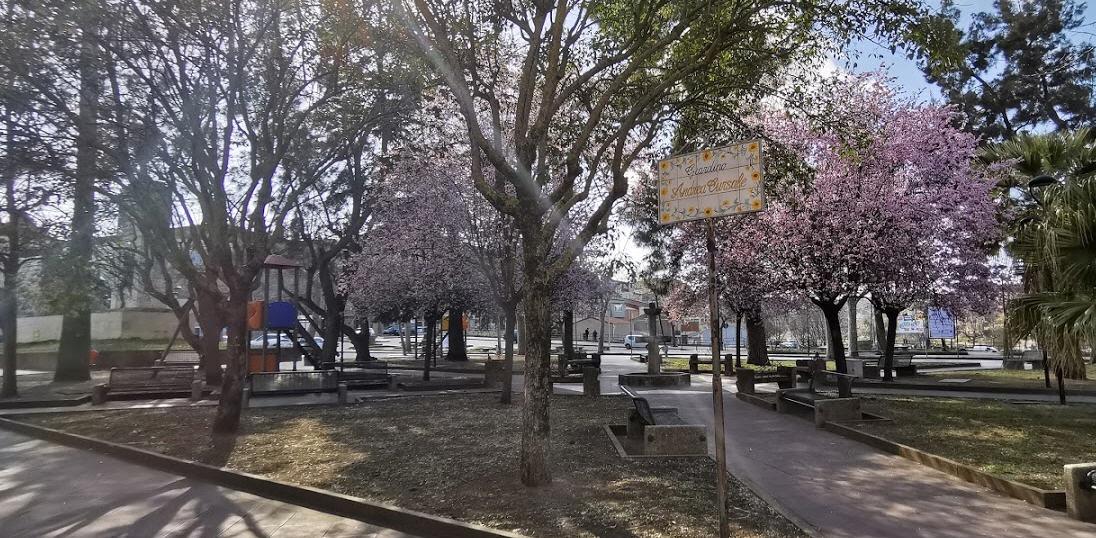 Covid19 a Piazza Armerina – Aumentano i casi, quattro scuole primarie chiuse per sospetta contaminazione in alcune classi