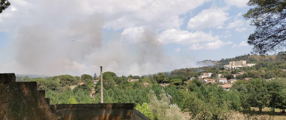 Piazza Armerina – Ancora un incendio di vaste dimensioni all'interno del bosco Bellia