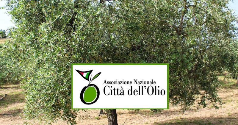 """Il comune di Troina aderisce all'associazione nazionale """"Città dell'olio"""""""
