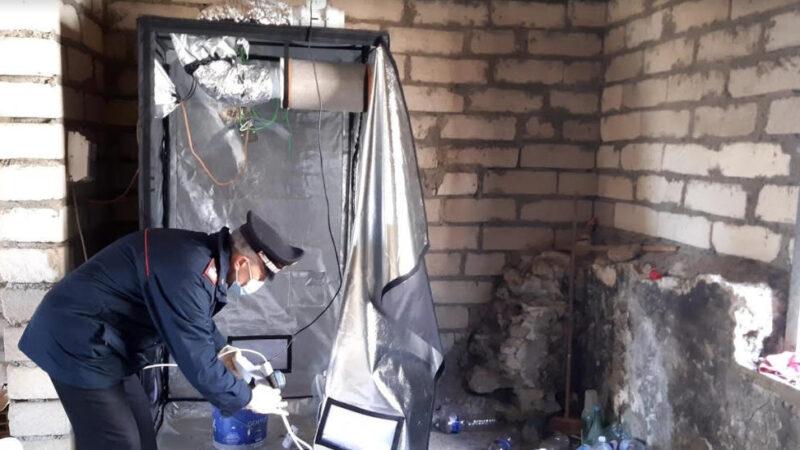 Carabinieri: controlli antidroga a Piazza Armerina e nei comuni limitrofi