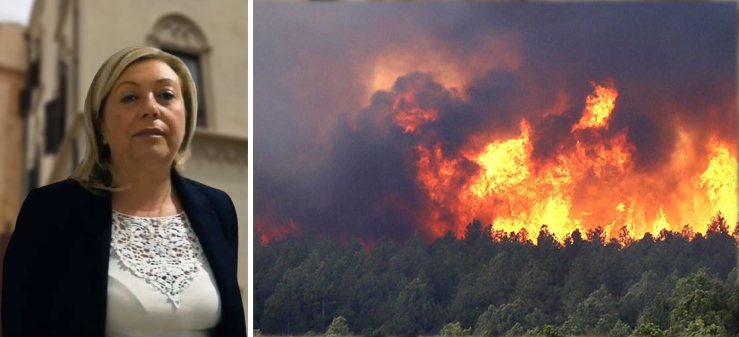 """Incendi, L'On Luisa Lantieri Lantieri:"""" la Regione non chieda lo stato di calamità nell'ennese ma intervenga direttamente"""""""