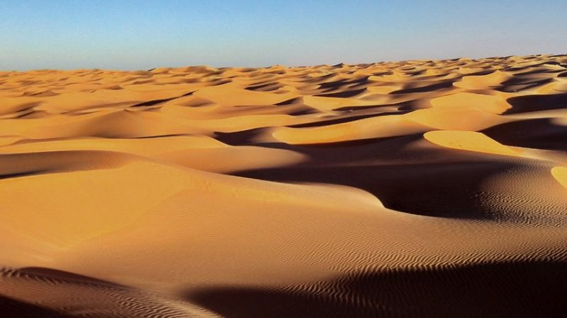 """L'associazione Luciano Lama promuove nello Stato del Sahara Occidentale il progetto """"Un orto nel deserto"""""""